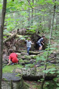 Forest School épisode 5